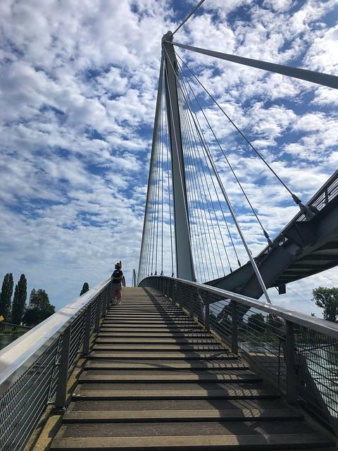 Nancy D. Brown Two Rivers Bridge, Strasbourg, France