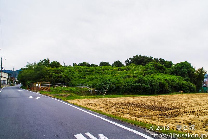 016fujiwara
