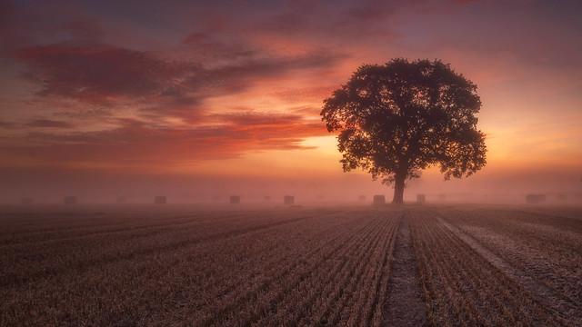 Thulston sunrise