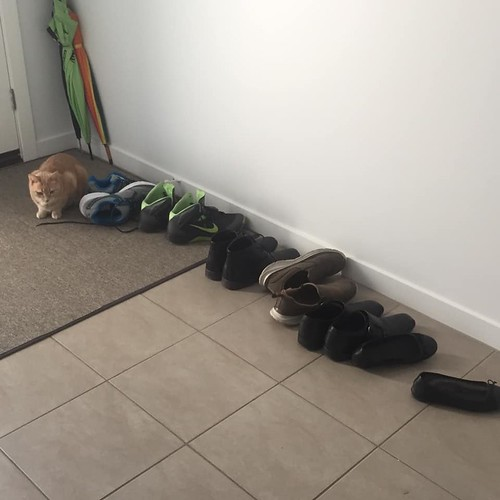 we need shoe storage