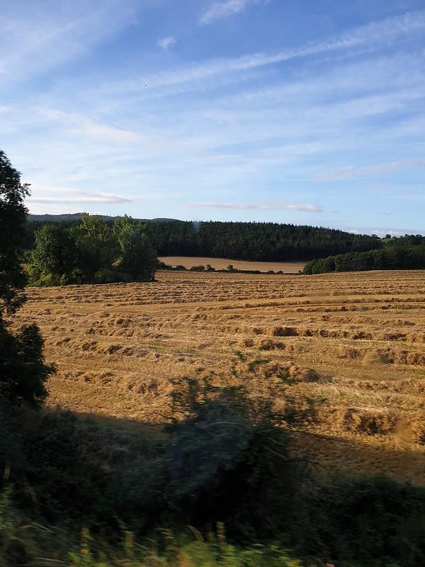 Final Harvest 2019