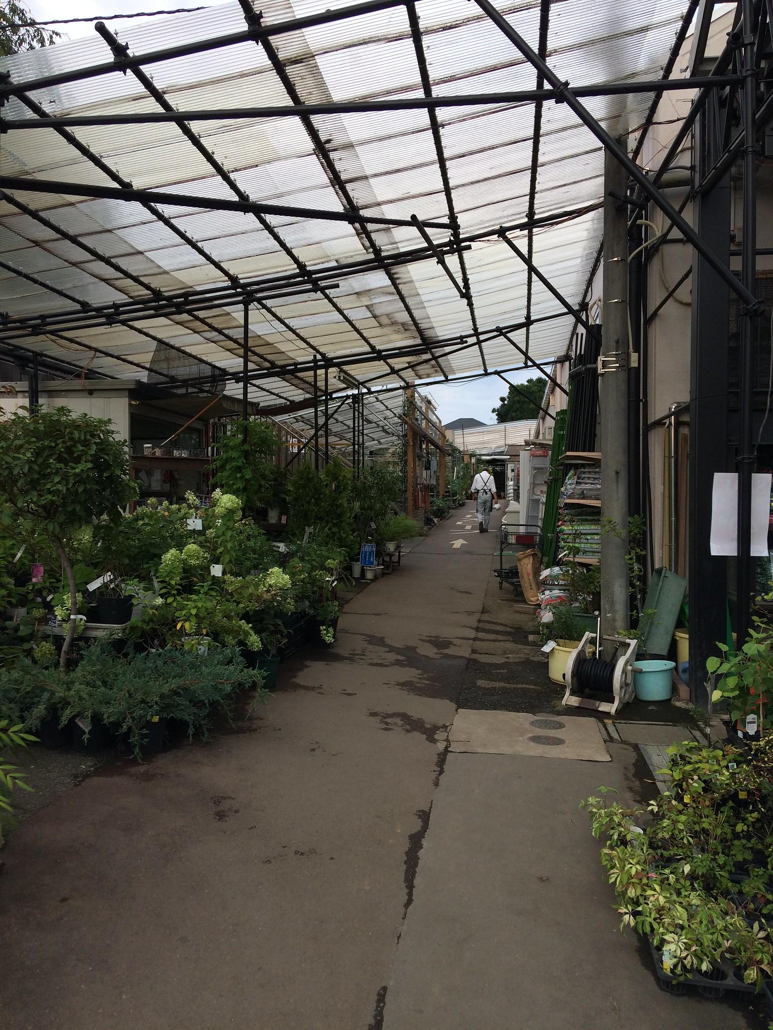 Ozaki flower park