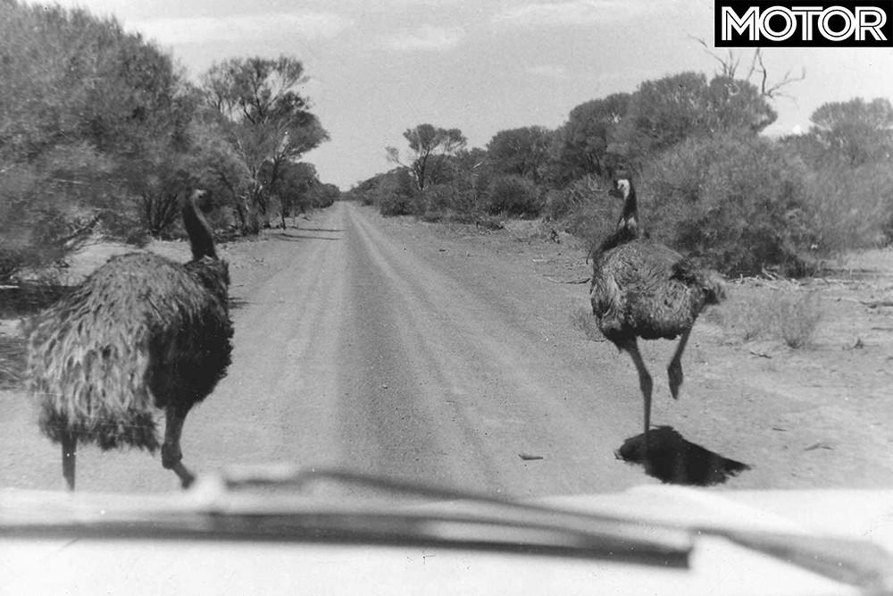 1968-London-Sydney-Marathon-rally-emu