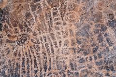 1908 Pichacho Mountain Petroglyphs 02