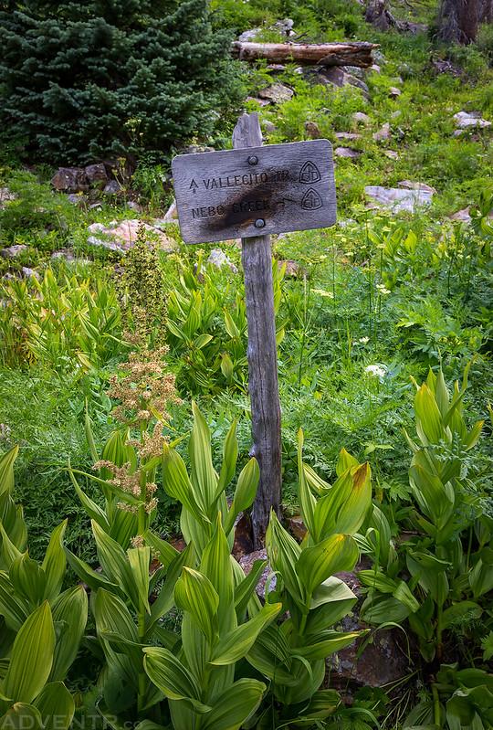 Nebo Creek Trail Sign