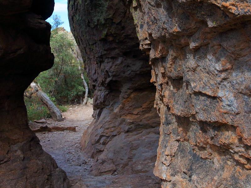 IMG_4383 Echo Canyon Trail, Chiricahua National Monument