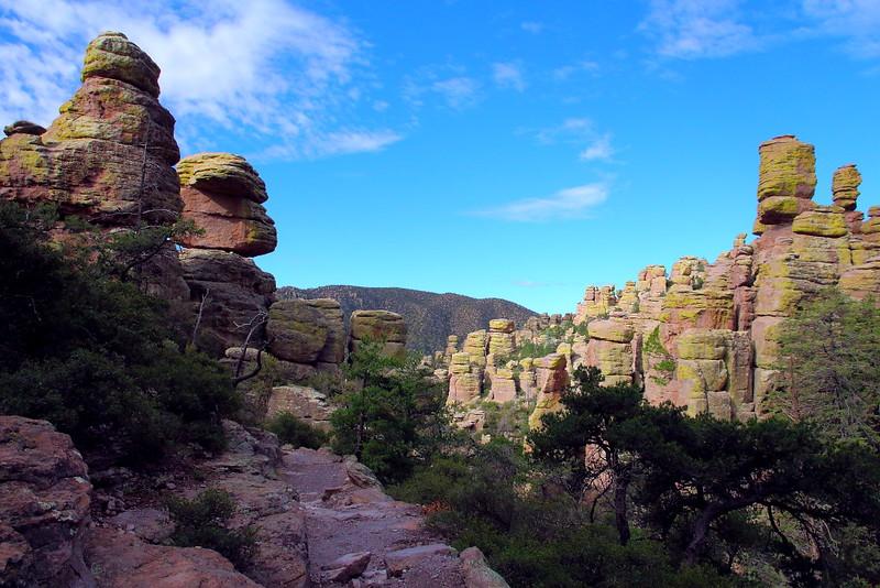IMG_4484 Echo Canyon Trail, Chiricahua National Monument