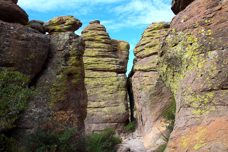 IMG_4440 Echo Canyon Trail, Chiricahua National Monument