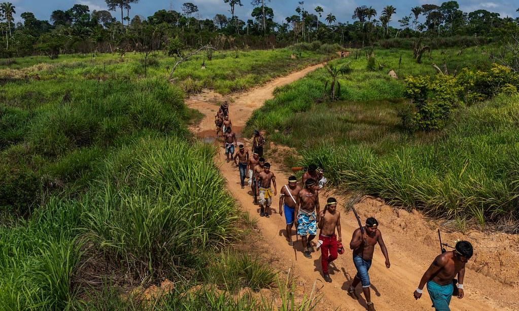 亞馬遜原住民希克林人決定自力驅逐非法伐林的入侵者。(圖片來源:Lalo de Almeida)
