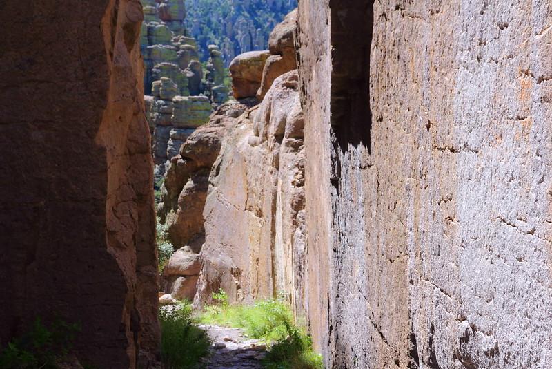 IMG_4770 Echo Canyon Trail, Chiricahua National Monument