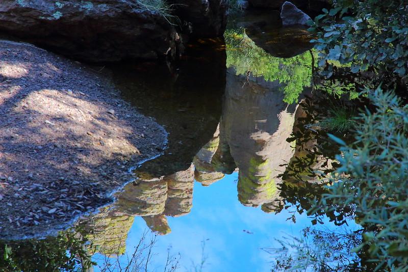 IMG_4600 Reflection at Echo Park