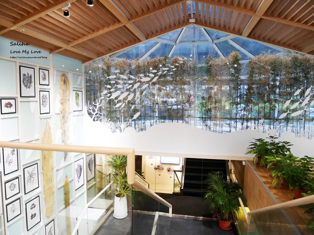 台北松山區八德路餐廳推薦京華城附近中華海洋生技褐藻鱸魚 (1)