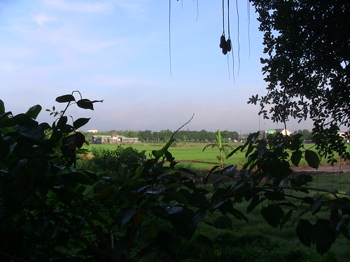 indonesia solo surakarta farm view