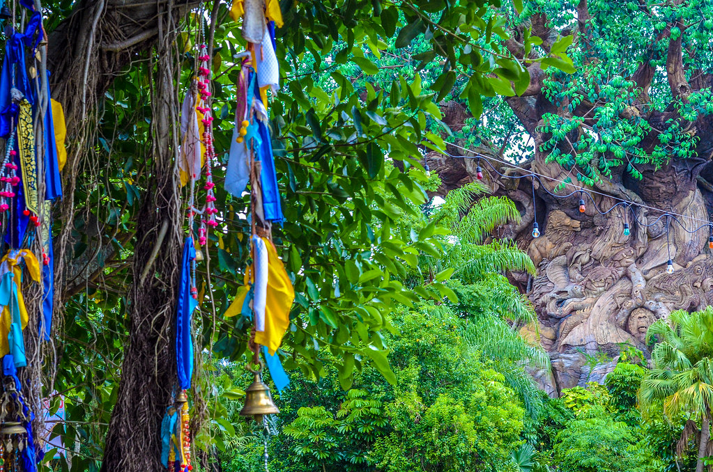 Tree of Life prayer flags AK