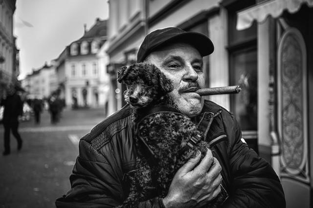 Poodle & Cigar