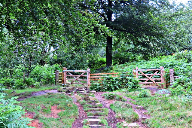 The Path to Stanage Edge, Peak District