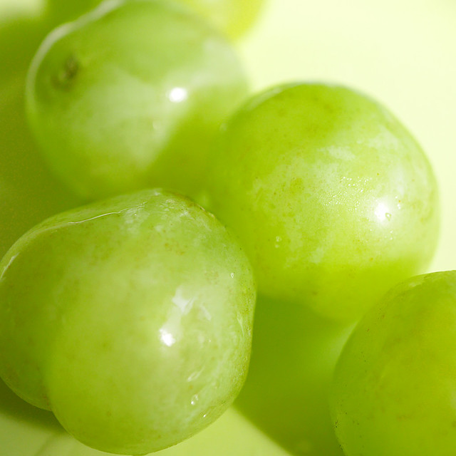 1080x1080 Seto Giants Grape