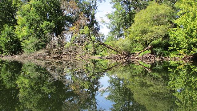 Descente en canoé de la Dordogne