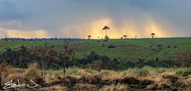 Altamira(PA)/Amazônia