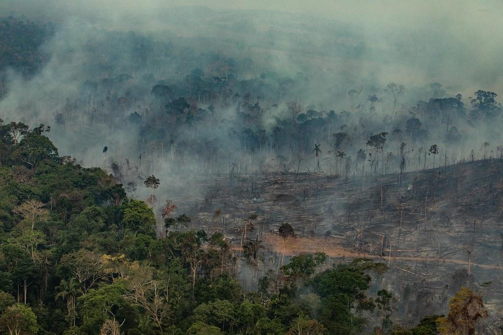 8月24日綠色和平巴西調查團隊空拍巴西朗多尼亞州Candeiras do Jamari市受災情況。 © Victor Moriyama / Greenpeace