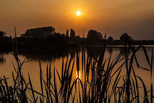 canon6d sunset sun golden landscape lake water reflection silhouette nature outside outdoors uk cambridgeshire