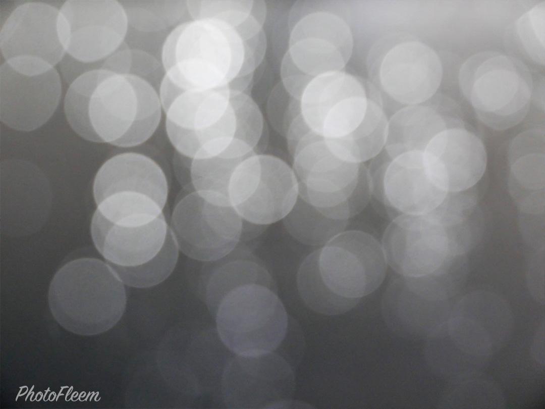 รีวิวภาพถ่าย กล้อง Leica D-Lux 7