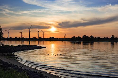 drennhausen elbe fluss river windrad windräder windengine sonnenuntergang sunset