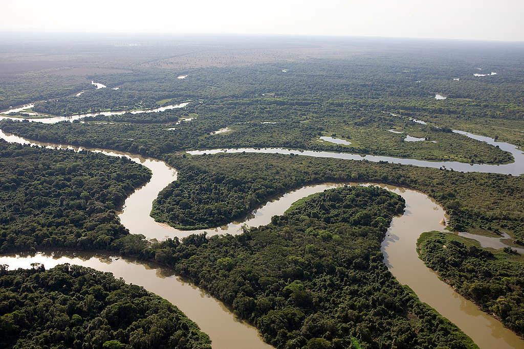 2008年8月8日綠色和平巴西調查團隊空拍亞馬遜巴拉圭河。 © Greenpeace / Daniel Beltrá