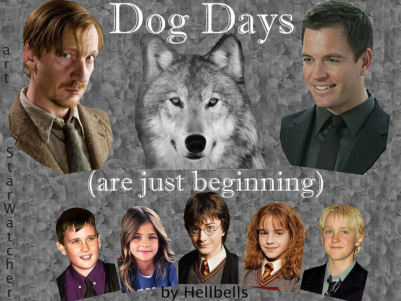variegated gray background. Top of picture -- head of wolf looks at viewer. Busts of Remus Lupin and Tony DiNozzo to either side. Bottom of picture -- smaller busts of Neville Longbottom, Tali DiNozzo, Harry Potter, Hermione Granger, Draco Malfoy arranged in a shallow arch. Text reads, 'Dog Days (are just beginning)'.