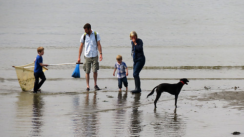 A family spends the day at the beach with their fast dog (Wales)