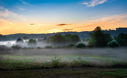 sunrise fog mist landscape grass trees morning sky massachusetts newengland nikon nikkor d700 nikond700