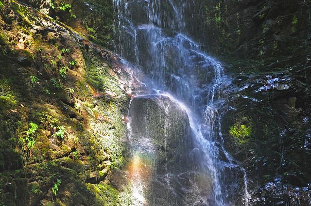 Berry Creek Falls Closer