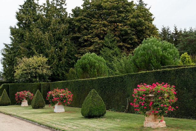 Jardins de l'hôtel de Beaumont, Valognes (Manche, France)
