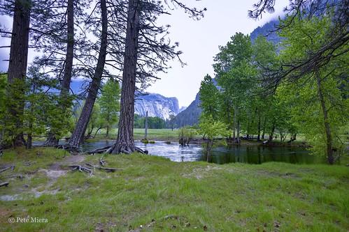 Merced River / Yosemite Valley - spring (2019)