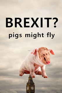 Brexit pigs might fly