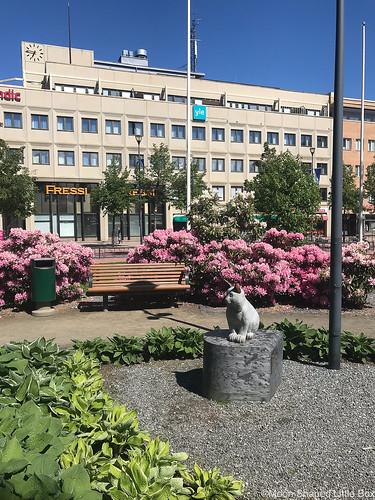 Joensuu_puisto