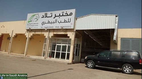 5319 Top 10 Best Pet and Vet clinics in Riyadh 04 | by Life in Saudi Arabia