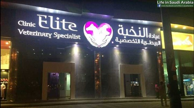 5319 Top 10 Best Pet and Vet clinics in Riyadh 01