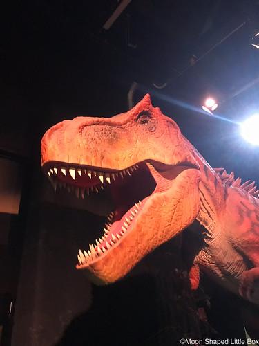Dinosaurus_Heureka_2019