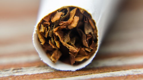 tobacco norfolk