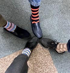 Socks 245/365 (5/1706)