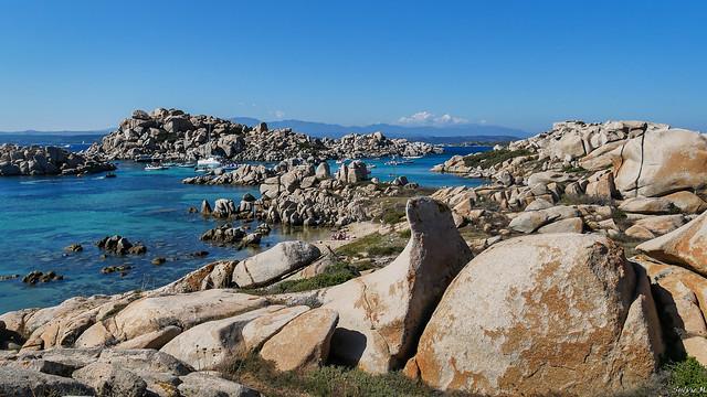 L'otarie des iles Lavezzi [Corse]