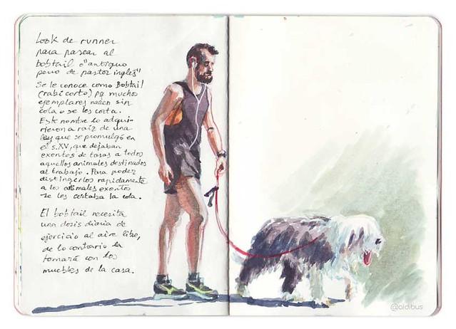Runner and bobtail