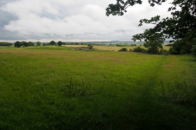 Near Budle