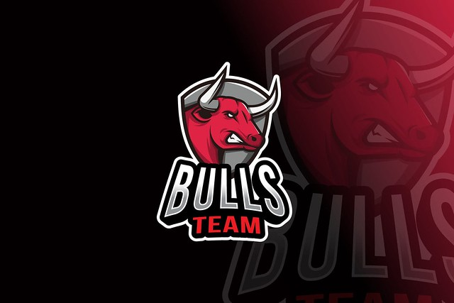 Bulls Team Logo Template