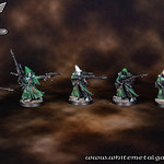 Biel Tan Eldar Army 0248-01