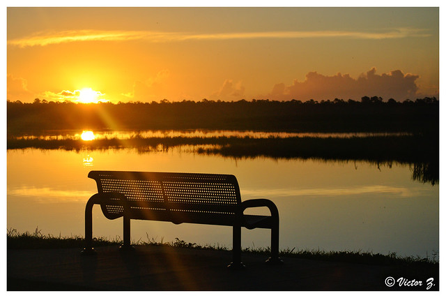 Sunrise, C.S. Lee park Sanford Florida -35