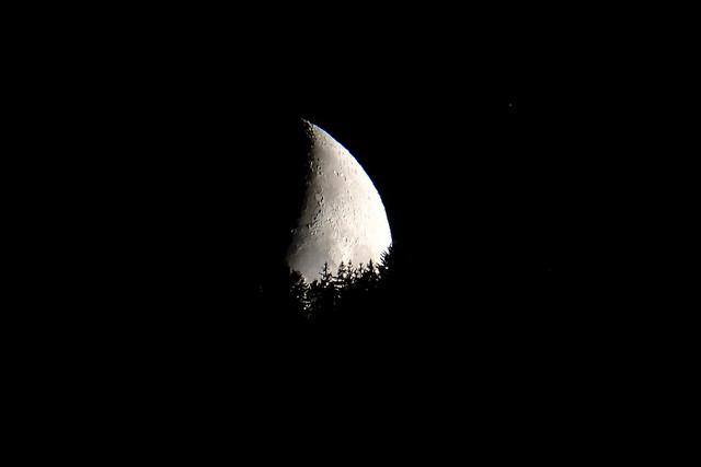 Bye bye Moon
