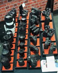 Sony cameras & lenses 247:365 (3:977)