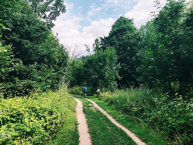 Elbe Cycle Path 2019